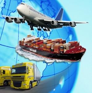 Экспорт 1 - Сертификат на экспорт центр сертификации и декларирования ОптимаТест!